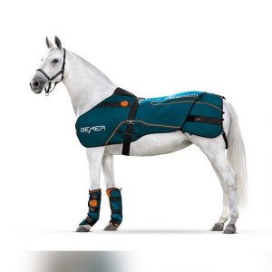 Pferd mit BEMER Horse-Set